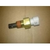 Lada 21214 Temperature Sensor